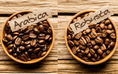 The Differences Between Arabica and Robusta