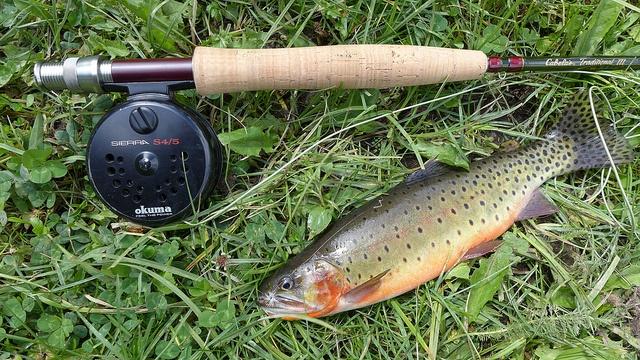 An Avid Angler and Coffee Lover Talks Winter Fishing